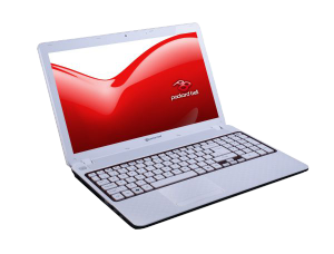 Packard Bell EASYNOTE F6243-HC-346HG 15,6 HD LED - Piros/Fehér