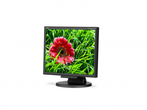 NEC Display MultiSync E171M 43.2 cm (17) LED LCD Monitor