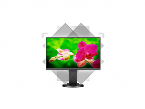 NEC Display MultiSync E241N - 24 Colos Full HD LED Monitor