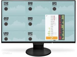 EIZO EV2456-BK EcoView Ultra-Slim - 24.1 Colos WUXGA IPS monitor